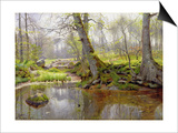 Woodland Pond, 1890 Posters by Peder Mork Monsted