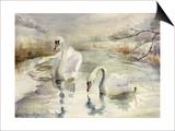 Swans in Winter Prints by Karen Armitage