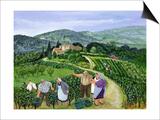 Chianti Classico, Villa Trasqua Poster by Margaret Loxton