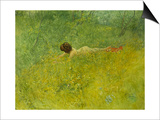 On the Grass; I Grongraset, 1902 Print by Carl Larsson