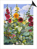 Hollyhocks and Sunflowers, 2005 Print by Christopher Ryland