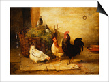 Poultry and Pigeons in an Interior, 1881 Prints by Walter Hunt
