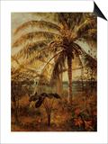 Palm Tree, Nassau, 1892 Posters by Albert Bierstadt