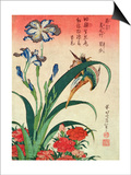 Kingfisher, Iris and Pinks, Pub. by Nishimura Eijudo, C.1832, One of a Set of Ten Prints Kunstdrucke von Katsushika Hokusai