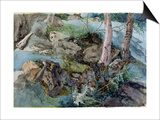 Study of Rocks and Ferns in a Wood at Crossmount, Perthshire, 1843 Art by John Ruskin