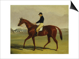 'Preserve' with Flatman Up at Newmarket, 1835 Poster by John Frederick Herring Jnr
