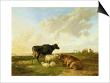 Landscape with Cows and Sheep, 1850 Prints by Thomas Sidney Cooper
