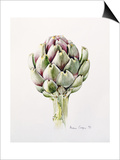 Artichoke Study, 1993 Posters by Alison Cooper