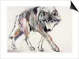 Wolf Prints by Mark Adlington