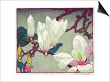 Magnolia, c.1925 Prints by Mabel Royds
