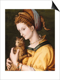 Lady with a Cat, C.1525-30 Art by Francesco Ubertini, Il Bacchiacca