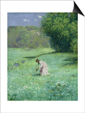 Woodland Meadow, 1876 Posters by Hans Thoma