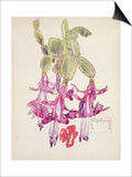 Cactus Flower Art by Charles Rennie Mackintosh