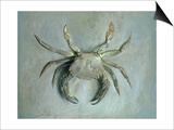 Velvet Crab, 1870-1 Art by John Ruskin