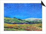 Derbyshire Landscape, 1999 Prints by Trevor Neal
