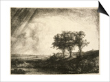 the Three Trees Posters by  Rembrandt van Rijn