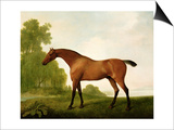 A Bay Thoroughbred in a Landscape, 1801 Prints by George Stubbs