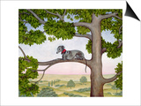 The Tree Whippet Posters by  Ditz
