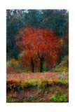 Red Tree Giclee Print by Andre Burian