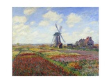 Tulip Fields in Holland by Claude Monet Giclee Print