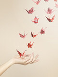 Group of Red Origami Cranes Flying Away from Hand Photographic Print