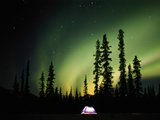 Aurora Borealis above Tent at Night, Fairbanks, Alaska Photographic Print by Steven Nourse