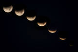 Lunar Eclipse, Phases Photographic Print by Don Grall