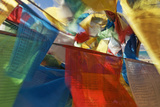 Tibetan Buddhist Prayer Flags in the Wind, Tibet Photographic Print by Alex Linghorn