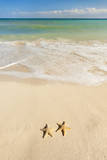 Mexico, Yucatan, Two Starfish on Beach Photographic Print by Tetra Images