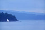 Sailboat on Ocean. Photographic Print by Grant Faint