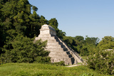 Pyramid in Palenque. Mexico Photographic Print by Siqui Sanchez