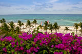 Ocean View, Playa Del Carmen, Quintana Roo Photographic Print by Steve Bly