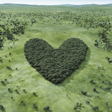 Forest Shaped Heart Photographic Print by Hiroshi Watanabe