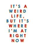 It's a Weird Life, But it's Where I'm at Right Now Plakater