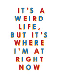 It's a Weird Life, But it's Where I'm at Right Now Stretched Canvas Print