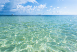Sea of Seven Colors, San Andres Island, Colombia Photographic Print by Jose Luis Stephens