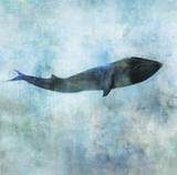 Ocean Whale 1 Prints by Ken Roko