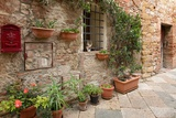 Beautiful Picturesque Nook of Rural Tuscany Photographic Print by Petr Jilek