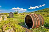 Wine Barrels on Stari Grad Plain Photographic Print by  xbrchx