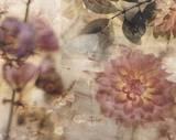 Garden Dreams 2 Prints by Matina Theodosiou