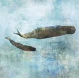 Ocean Whale 2 Posters by Ken Roko
