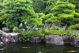 Japan, Himeji, Himeji Koko-En Gardens, Pond with Koi Carps Photographic Print by  Nosnibor137