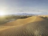 Empty Dunes Photographic Print by Miguel Navarro