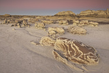 Bisti Badlands, New Mexico Photographic Print by Enrique R. Aguirre Aves