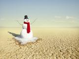 Snowman in the Desert Photographic Print by Stephen Swintek