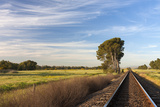 Wide Angle View of a Railway in the Countryside. Swartland Area, Western Cape, South Africa. Photographic Print by Hougaard Malan