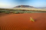 Namib Desert, Namibia Photographic Print by Ben Cranke