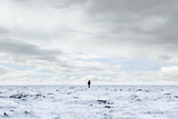 Man Standing in Middle of Salt Flats. Photographic Print by Thomas Northcut