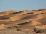 Algerian Desert Photographic Print by in salah