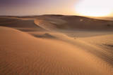 Wahiba Sands, Oman Photographic Print by Michele Falzone